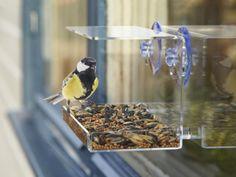 Utenu® Fuglefoderbræt til Vinduet 69 kr Bellatrix, Bird Feeders, Mad, Sweet Home, Gadgets, New Homes, Cool Stuff, Outdoor Decor, Home Decor