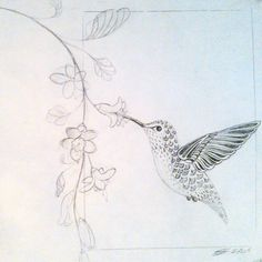 New Humming Bird Sketch Hummingbird Drawing A Tattoo Ideas Bird Drawings, Drawing Sketches, Sketch Art, Sketching, Vine Drawing, Pencil Drawings Of Nature, Drawing Art, Hummingbird Sketch, Hummingbird Quotes