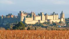 Chinon Chateau