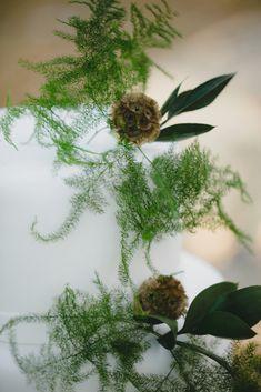 Dandelion, Wedding Cakes, Flowers, Plants, Wedding Gown Cakes, Dandelions, Wedding Cake, Florals, Plant