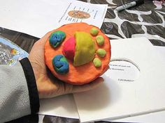 ANIMAL CELL MODEL IDEAS –Science class is always lots of fun! Learning science can be done in fun ways, especially when you learn the animal cell anatomy. One fun way to learn it is by knowing animal cell model ideas. Plant Cell Project, Cell Model Project, Animal Cell Project, Science Projects, School Projects, Craft Projects, Science Ideas, Science Experiments, Project Ideas