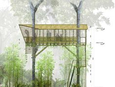 Hanging spherical lodge is a treetop retreat in Laos