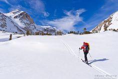 Mountain Solitaire | Russ Bishop | Nature Photo Blog / © Russ Bishop