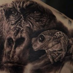 Ukrainian tattoo artist, Dmitriy Samohin, takes tattoos to a whole new level. With his incredible talent and artistry, his works of art come to life. Here are some of his hyper-realistic tattoo designs. Funny Tattoos, Great Tattoos, Trendy Tattoos, Tattoos For Guys, Persian Tattoo, Gorilla Tattoo, Hyper Realistic Tattoo, Frog Tattoos, Realism Tattoo