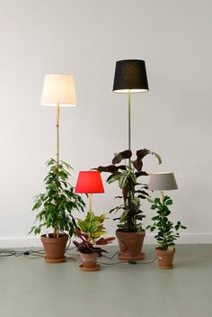 what a cool idea! plant lamps by helmut smits #lamp #design #smile
