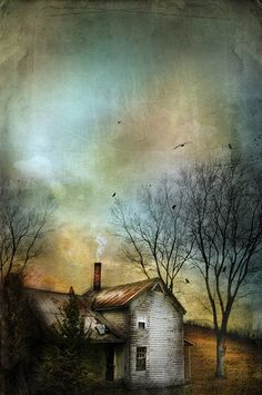 Where We Land by Distressed Jewell, via Flickr Jamie Heiden