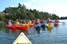 Foxes kayaking