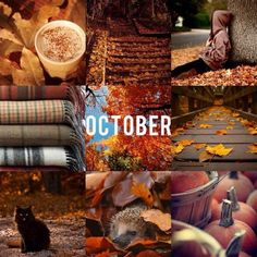 october, autumn, and fall image Seasons Of The Year, Best Seasons, Months In A Year, Four Seasons, October Country, Hello October, October Poem, Autumn Cozy, Autumn Fall