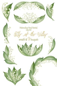 Flower Clipart Watercolour Hand Painted Lily by WatercolorSeasons