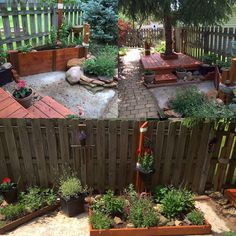 Small side yard converted to a butterfly garden