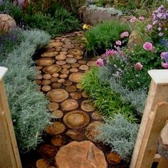 What a cool way to use a downed Tree -stepping stones