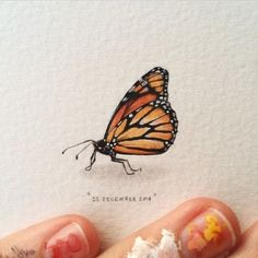 Day 357 : African monarch butterfly | Danaus chrysippus | Plain Tiger.  27 x 25 mm. #365postcardsforants #miniature #watercolor #painting #art #butterfly #africanmonarch #capetown (at Oranjezicht City Farm)