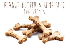Recipe: Peanut Butter & Hemp Seed Dog Treats Herbert P. Spaulding would love these I bet! Peanut Butter Brands, Chunky Peanut Butter, Best Peanut Butter, Dog Biscuit Recipes, Dog Treat Recipes, Dog Food Recipes, Hemp Recipe, Puppy Treats, Dogs