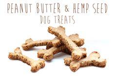 Recipe: Peanut Butter & Hemp Seed Dog Treats
