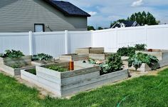 Creative Mommas: DIY Raised Garden Beds