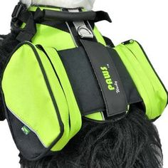 Wacky Paws Pet Sport Travel Harness, X-Large, Green >>> Read more reviews of the product by visiting the link on the image. (This is an affiliate link and I receive a commission for the sales)