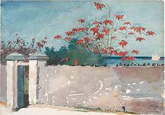 """A Wall, Nassau"" by Winslow Homer  (American, Boston, Massachusetts 1836–1910 Prouts Neck, Maine)"