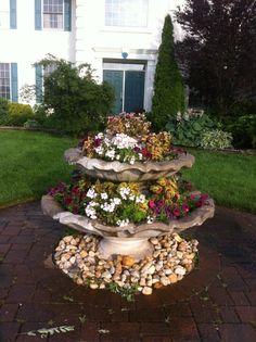 99 Best Succulents Fountain Images Container Garden Succulent