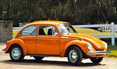 1973 VW Super Beetle. Mine was like this for about a month. Then my girlfriend and I painted huge blue mushrooms on both doors. They had bright yellow polka-dots. There was also a frog wearing a crown on the driver's side rear quarter panel. Yep. 1973