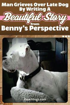 A touching story from a heartbroken dog parent.