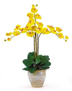 Triple Phalaenopsis Silk Orchid Flowers in Yellow