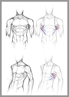 Blank Human Body Diagram . Blank Human Body Diagram Human