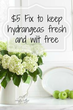 FRENCH COUNTRY COTTAGE: Flower Power~ $5 fix to keep hydrangeas fresh
