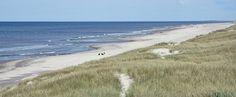Jutland-Sondervig. Mooiste strand van Denemarken mét gratis wifi. In de zomer zandsculpturen kunst. Strand, Iceland, Norway, Sweden, Beach, Tips, Outdoor, Viajes, Kunst
