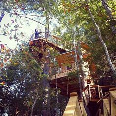 I bet the super moon looks amazing from the top of the Red River Gorge treehouse @canopycrew #treehouseclub