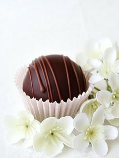 Prune truffles {300 g prunes; 100 g melted chocolate; 100 g chopped walnuts; 2 T rum}