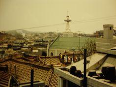 My rooftop? Sure looks like it!