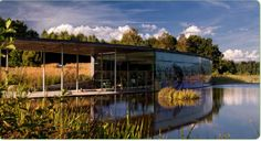 Unterwasserteich Schrems Places Ive Been, Water Pond, Woodland Forest