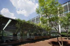 Jardin Botanico, biblioteca publica de México by TAX | Alberto Kalach
