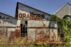 No More Juice by Andrew Armstrong - Orange Room Images
