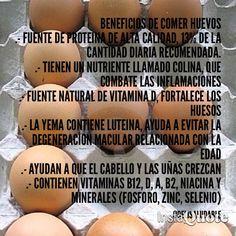 29 Ideas De Beneficios De Alimentos Saludables Beneficios De Alimentos Alimentos Saludables Alimentos