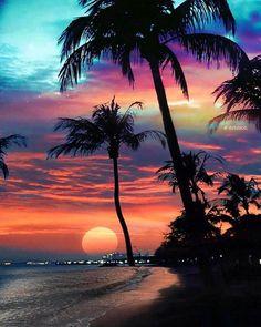 A beautiful sunset. Inspiration for art. Beautiful Nature Wallpaper, Beautiful Sunset, Beautiful Beaches, Beautiful Landscapes, Beautiful Scenery, Summer Wallpaper, Beach Wallpaper, Tree Wallpaper, Beach Photos