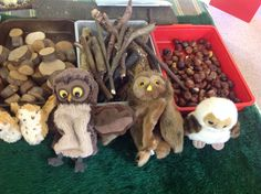 Owl Babies challenge - design a nest. Our new puppets and natural materials.