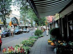 Winkelstraat in Schoorl.