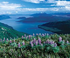 """Sitka, AK """"The Paris of the Pacific"""" I will visit here one day with Carnival Cruise Lines!"""