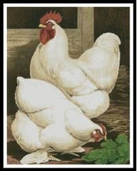 Everything Cross Stitch - White Cochin Chickens