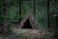 Artist Has Spent 7 Years Turning UK Forests Into Works Of Art | Bored Panda