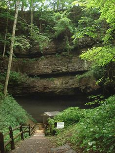 Organ Cave in Greenbrier County is the largest cave system in the state. It's a registered National Natural Landmark. It's also a historic place, because it was there that Confederate Soldiers hid from the Yankees for three winters during the Civil War.