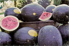 sun & stars watermelon