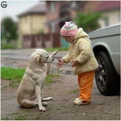 犬と子供『初めてのお手』 : デジログ!