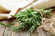 Rosemary- A Wonder Herb of Medicinal Value – Ayurveda at its Best