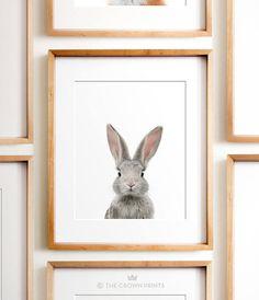 Nursery art PRINTABLE art Animal print Baby rabbit print