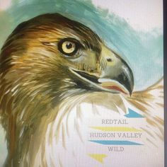 Another thing to fight for #hudsonvallywild #altnationalparkservice