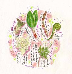 山菜 イラスト - Google 検索