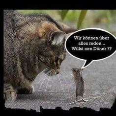 So ein tapferes Mäuschen