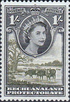 Bechuanaland 1955 Queen Elizabeth II Baobab Tree SG 149 Fine Mint Scott 161 Stamps For Sale Take a Look
